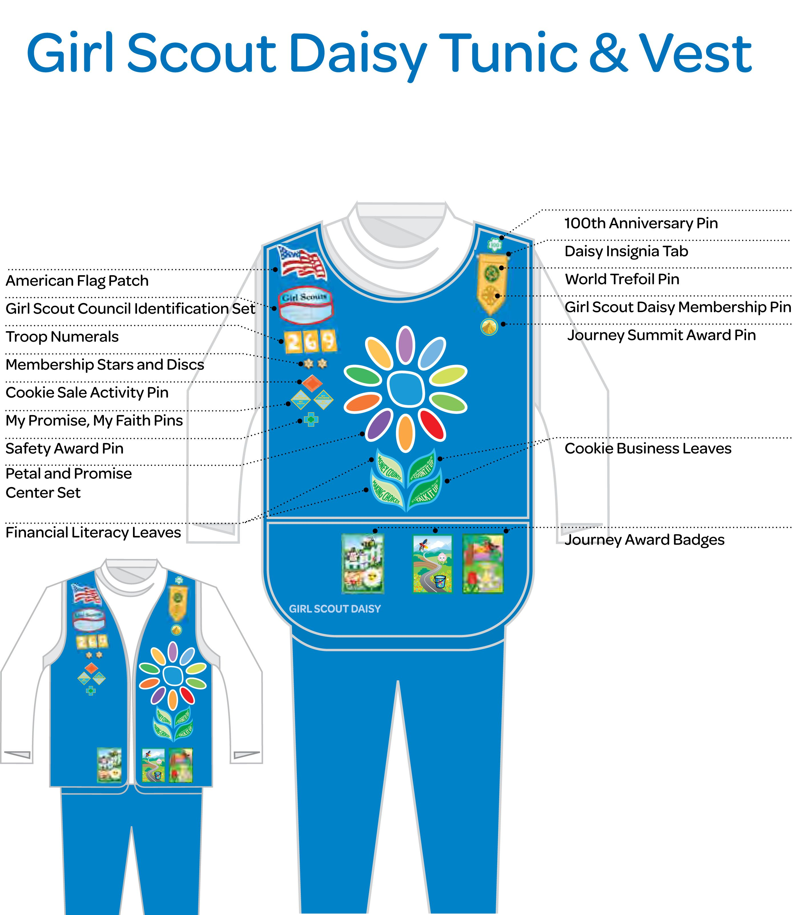 girl scout daisy uniform | See the list of all insignia for Girl ...