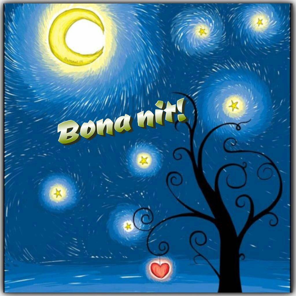 Bona Nit Buenas Noches Good Night Inspiration Pinterest Good