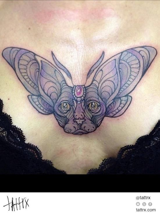 Miss Juliet - Kitten Moth | tattrx