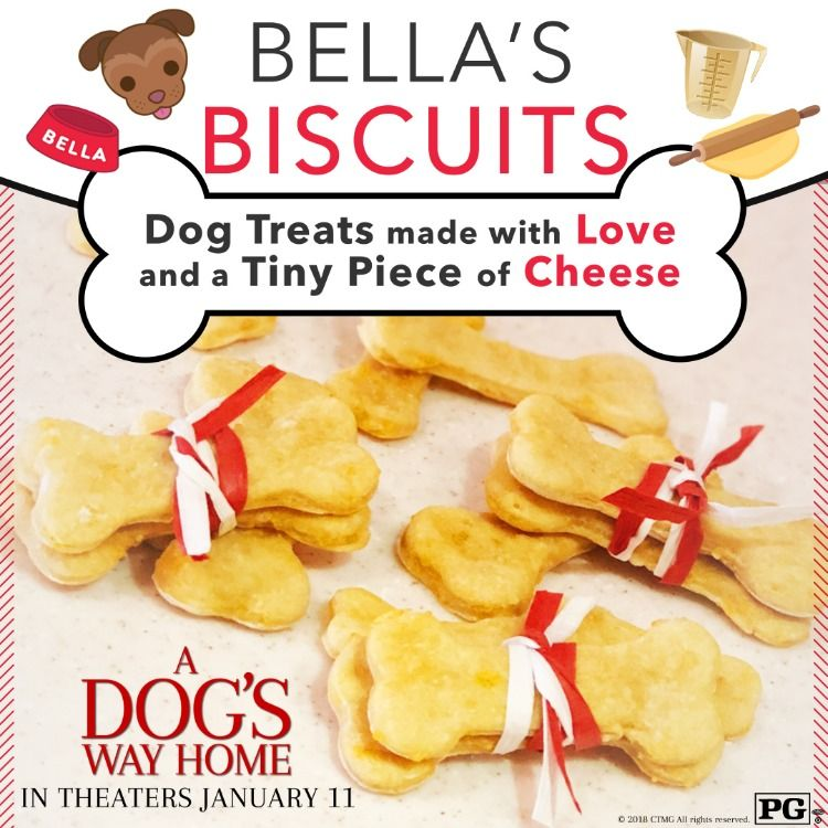 Treat Your Pup With The Ultimate Treat Bella S Biscuits Dog