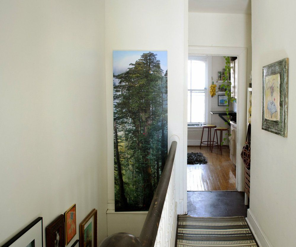Abby's Cozy Capitol Hill Nest (With Images)