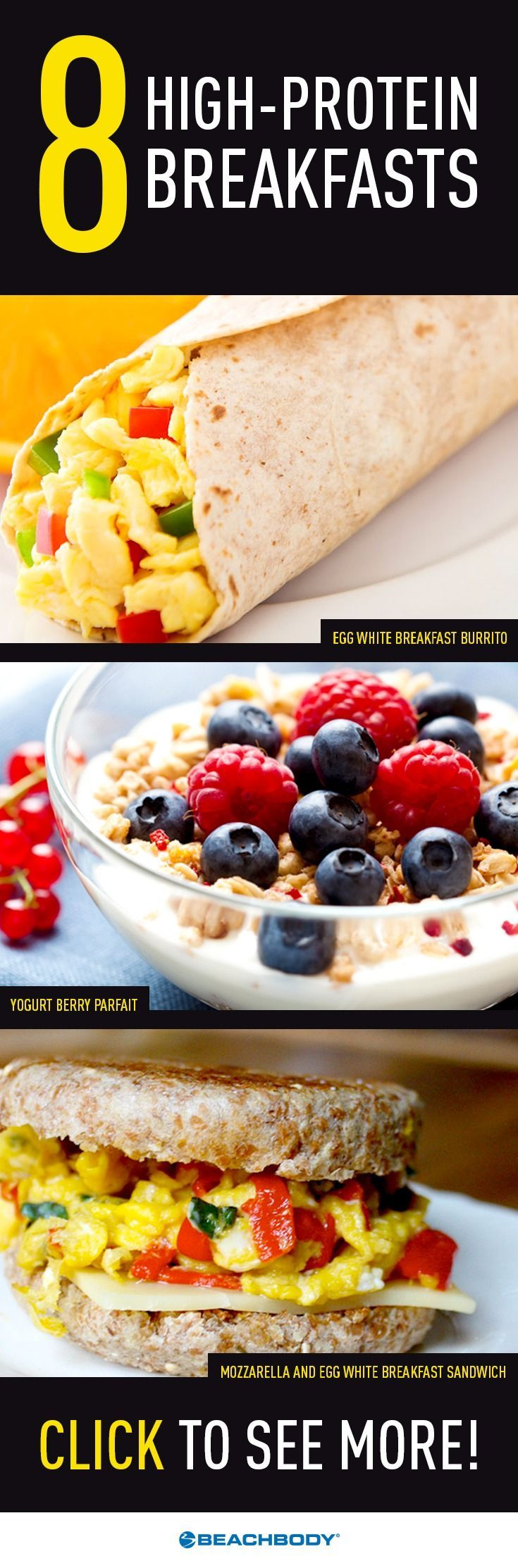recipes for high protein low carb meals
