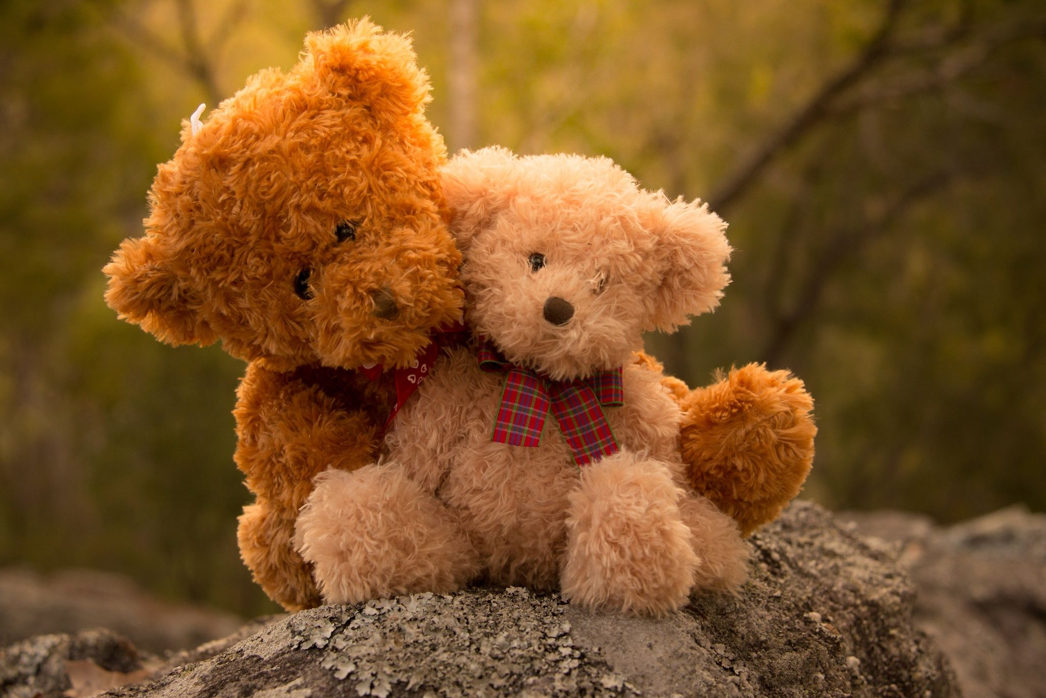 Pin By Gaby On Teddy Als Globetrotter Und Andere Geschichten Teddy Bear Wallpaper Teddy Bear Pictures Teddy Bear