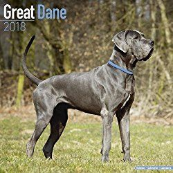 Great Dane Euro Calendar Dog Breed Calendars 2017 2018