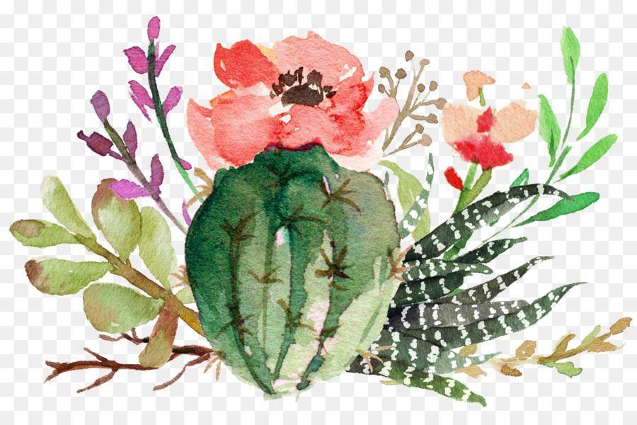 Cactus Cactus Png Kaktus
