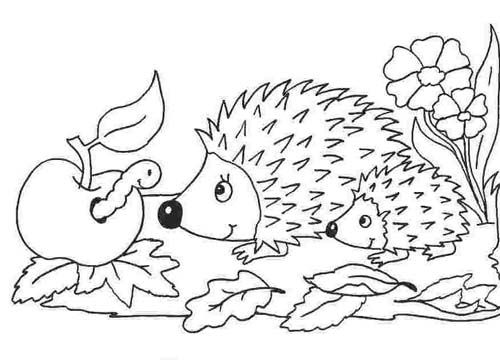 Malvorlage Herbst Ausmalbilder Fur Kinder Igel Ausmalbild Ausmalbilder Ausmalbilder Tiere