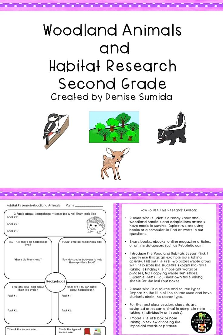 Second Grade Animal Research Project - Woodland Habitat Worksheets    Kindergarten worksheets sight words [ 1102 x 735 Pixel ]