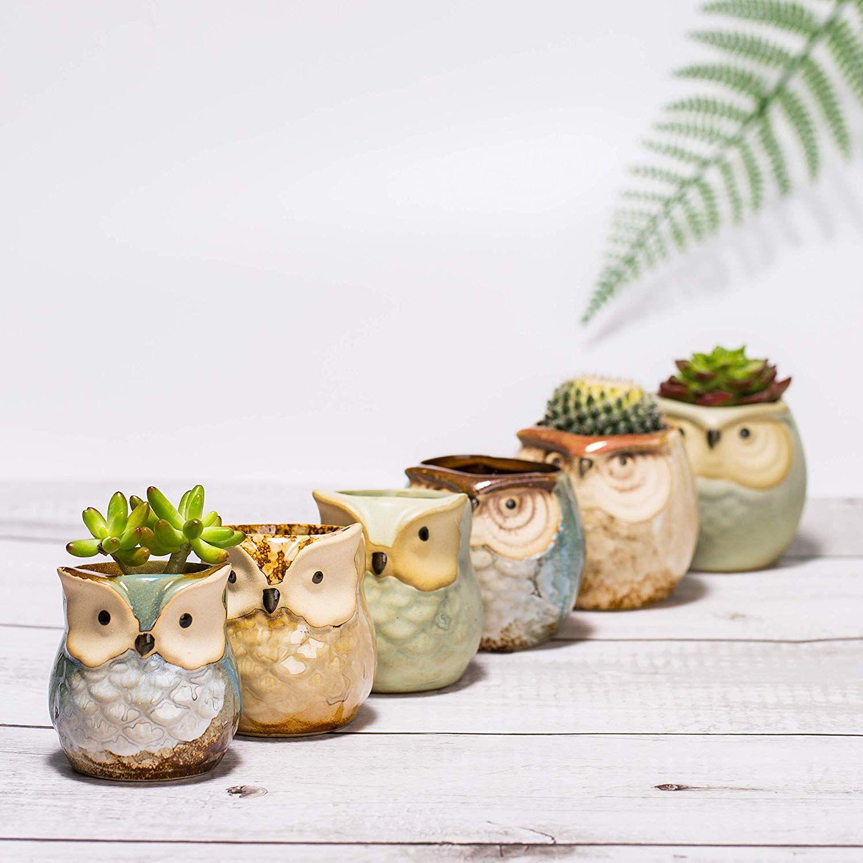 Diy Heart Print Terra Cotta Cactus Pots Love And Specs Diy Flower Pots Succulent Pots Terracotta Pots