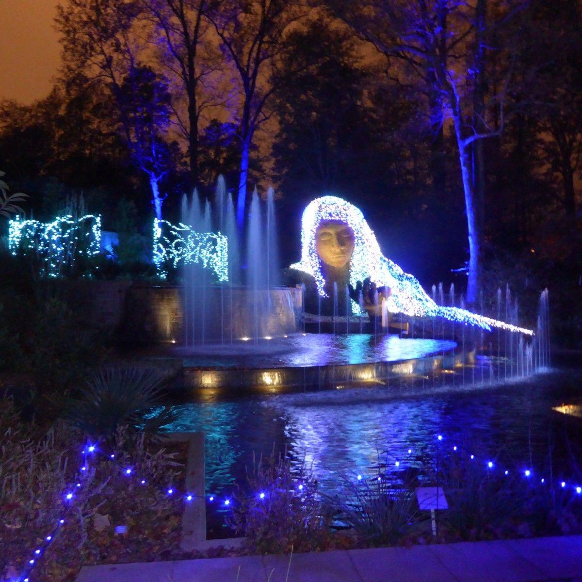 Atlanta Botanical Garden Holiday Lights Atlanta