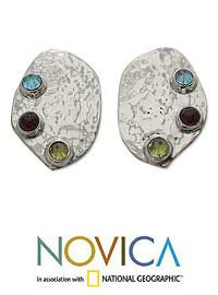 Blue+topaz+&+garnet+button+earrings,+'Taxco+Harmony'+at+The+Animal+Rescue+Site