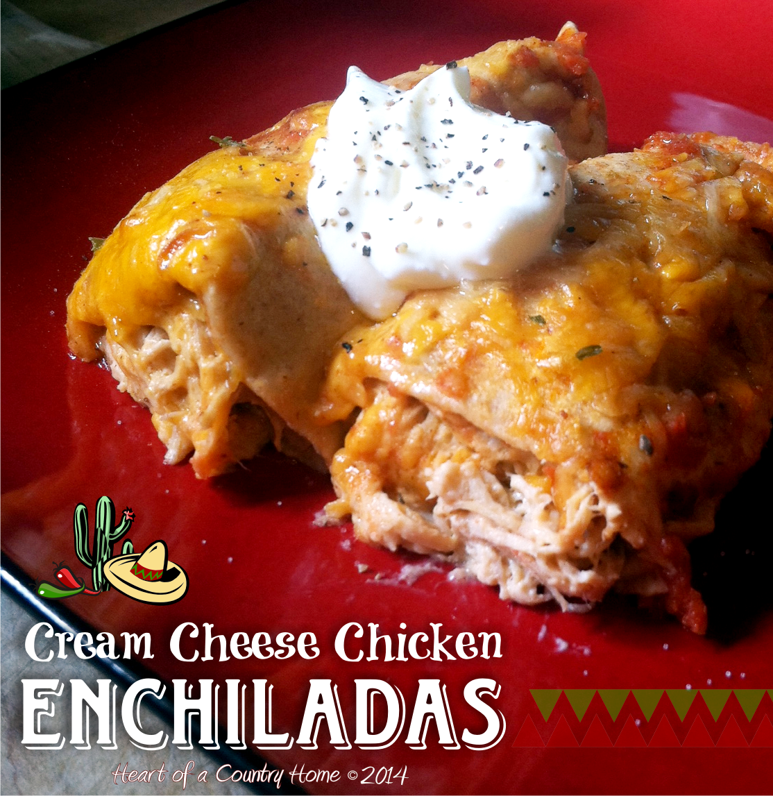 Cream Cheese Chicken Enchiladas Low Carb Cream Cheese Chicken Cream Cheese Chicken Enchiladas Low Carb Enchiladas