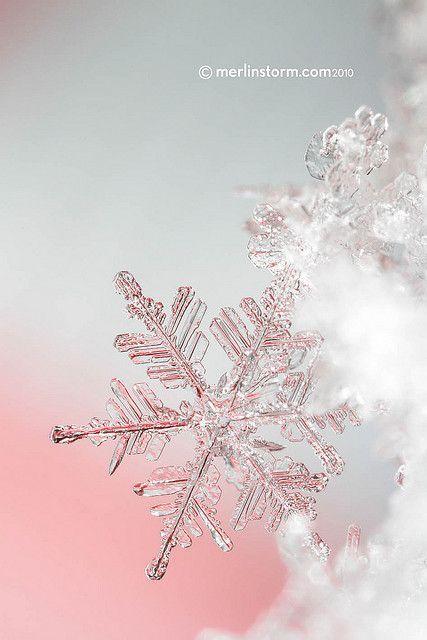 Snowflake Close-up 5 #fondecrannoel