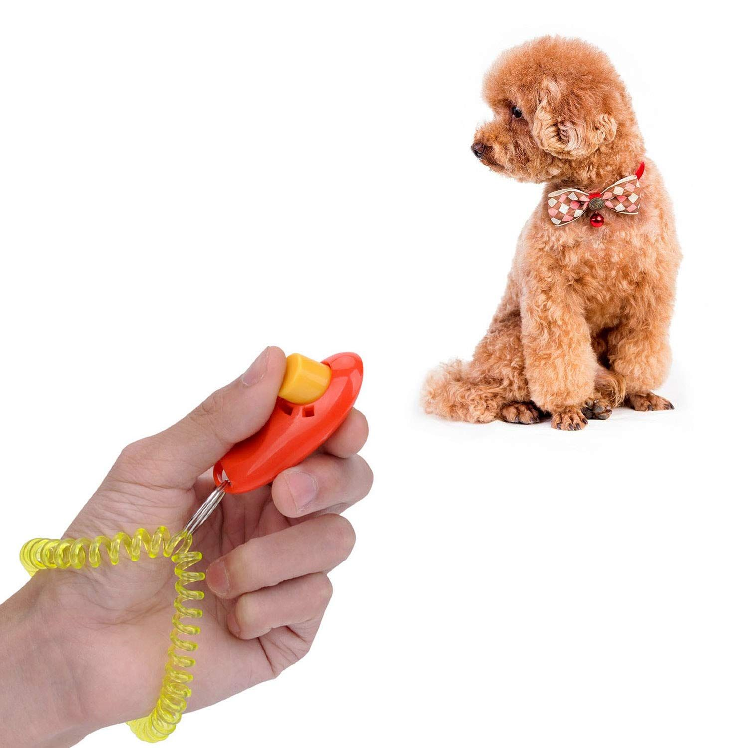 Dog Behavior Submissive And Clicker Training Your Dog To Walk To