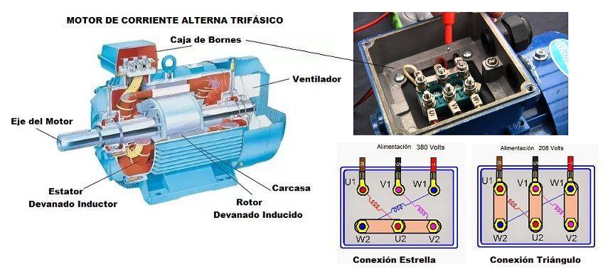 Motor Trifasico Aprende Facil Motor Trifasico Motores Motor Electrico