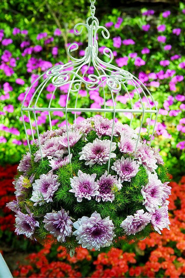 70 Hanging Flower Planter Ideas (PHOTOS and TOP 10) | Planters ...