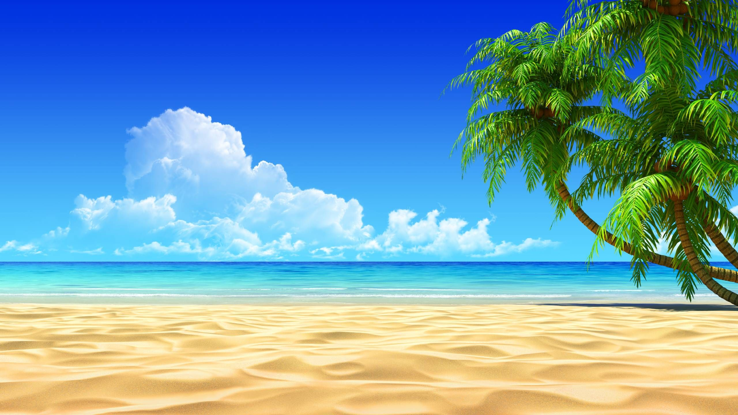 Tropical Beach Wallpaper Picture Beach Wallpaper Beach Background Beach Desktop Backgrounds
