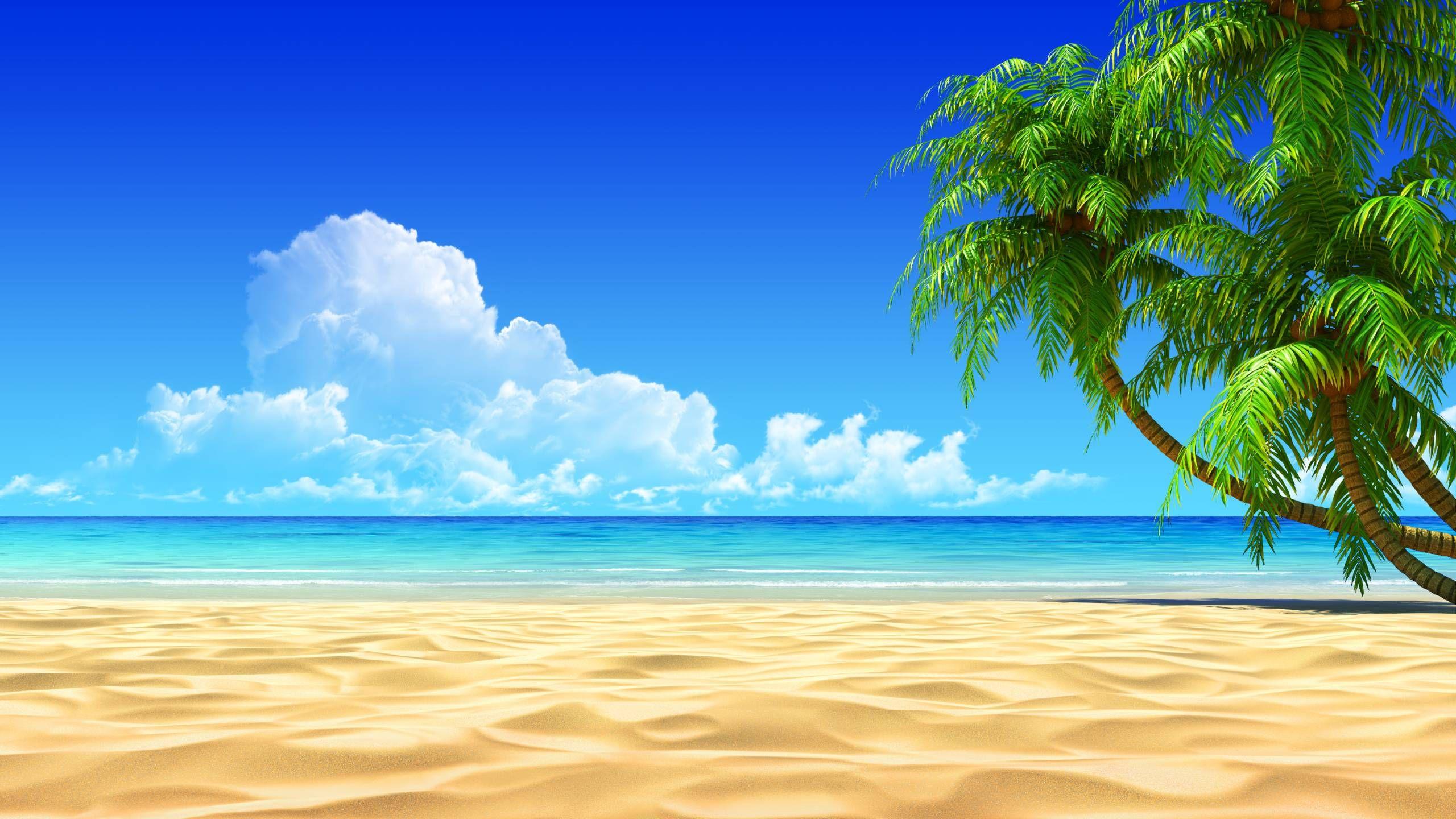 free tropical desktop backgrounds wallpaper cave