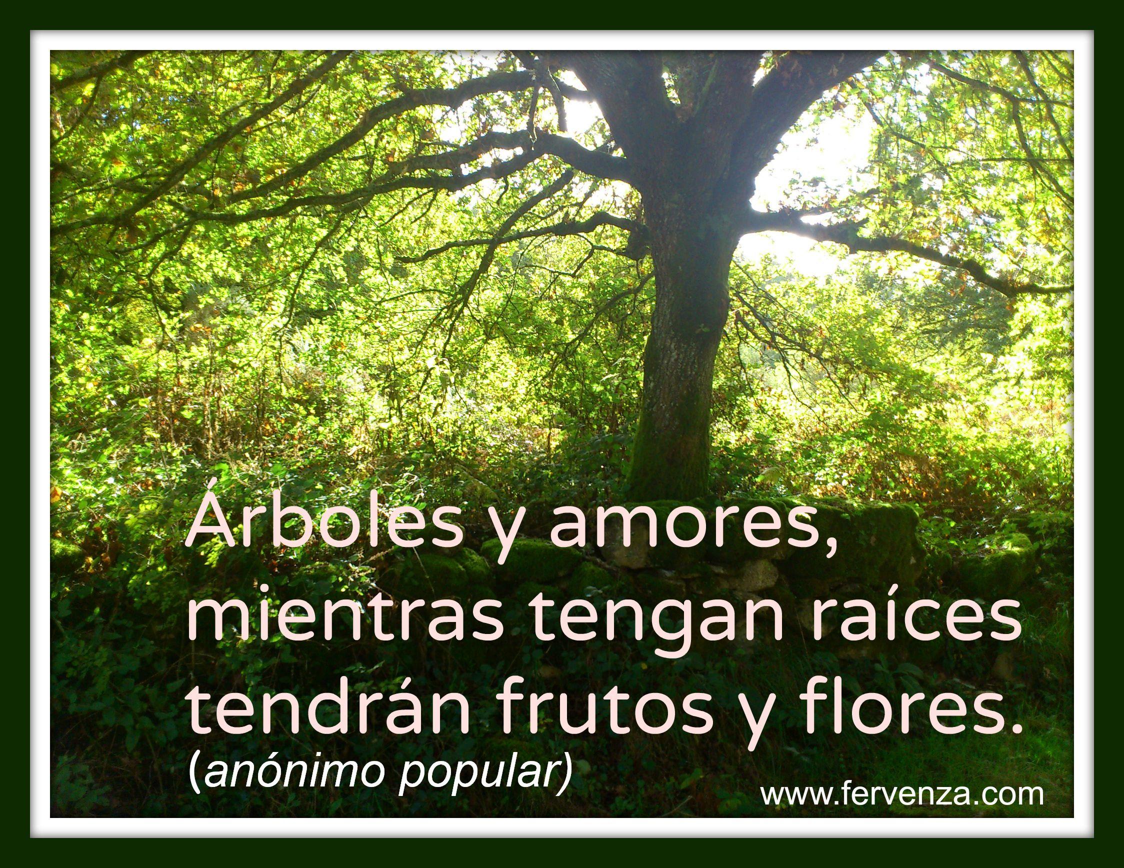 """""""árboles Y Amores, Mientras Tengan Raíces Tendrán"""