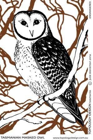 Masked Owl - Endangered Species Tea Towel