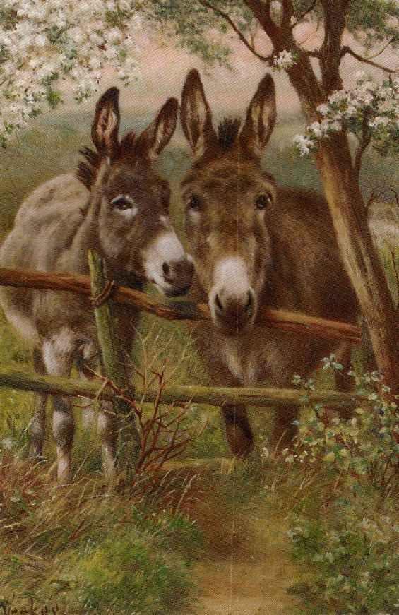 Herbert William Weekes Darby And Joan Animals Beautiful