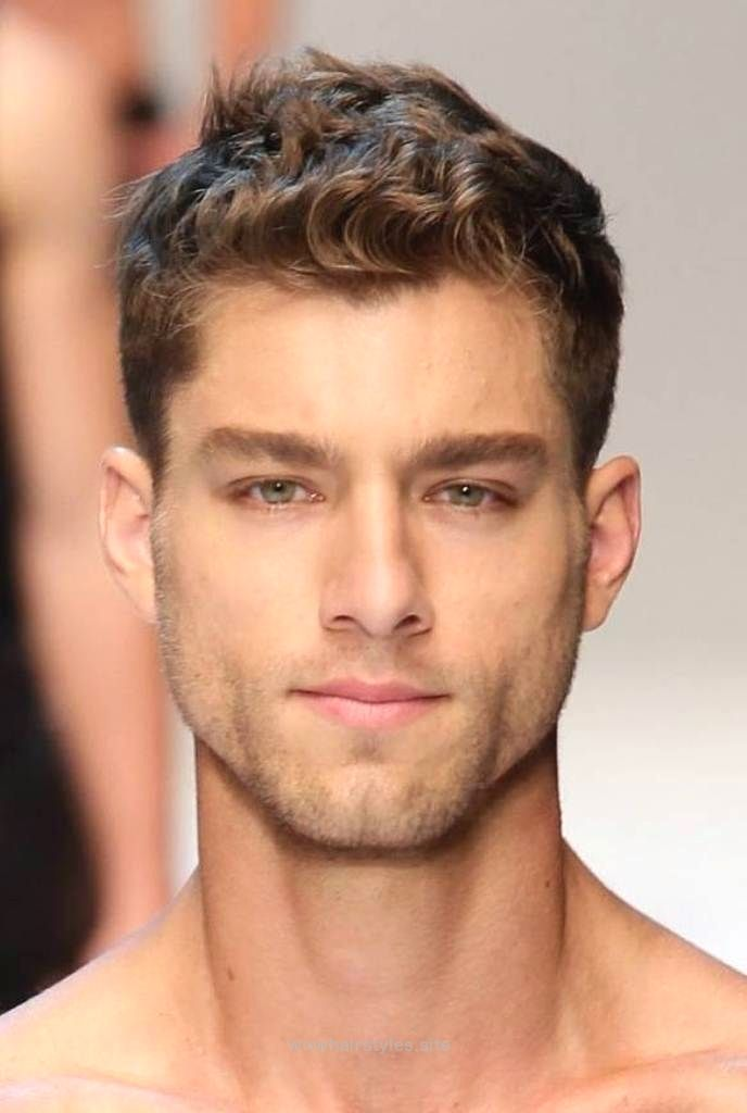 Mens Curly Hairstyles Men Curly Hairstyles… Httpwwwwowhairstylessite20170730Men