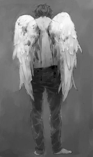 Angel Anime Wings : angel, anime, wings, Anime, Angel,, Angel, Fallen
