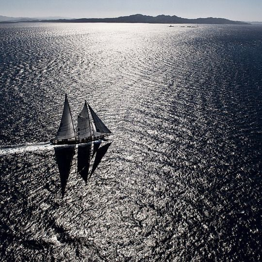 Kurt Arrigo photography