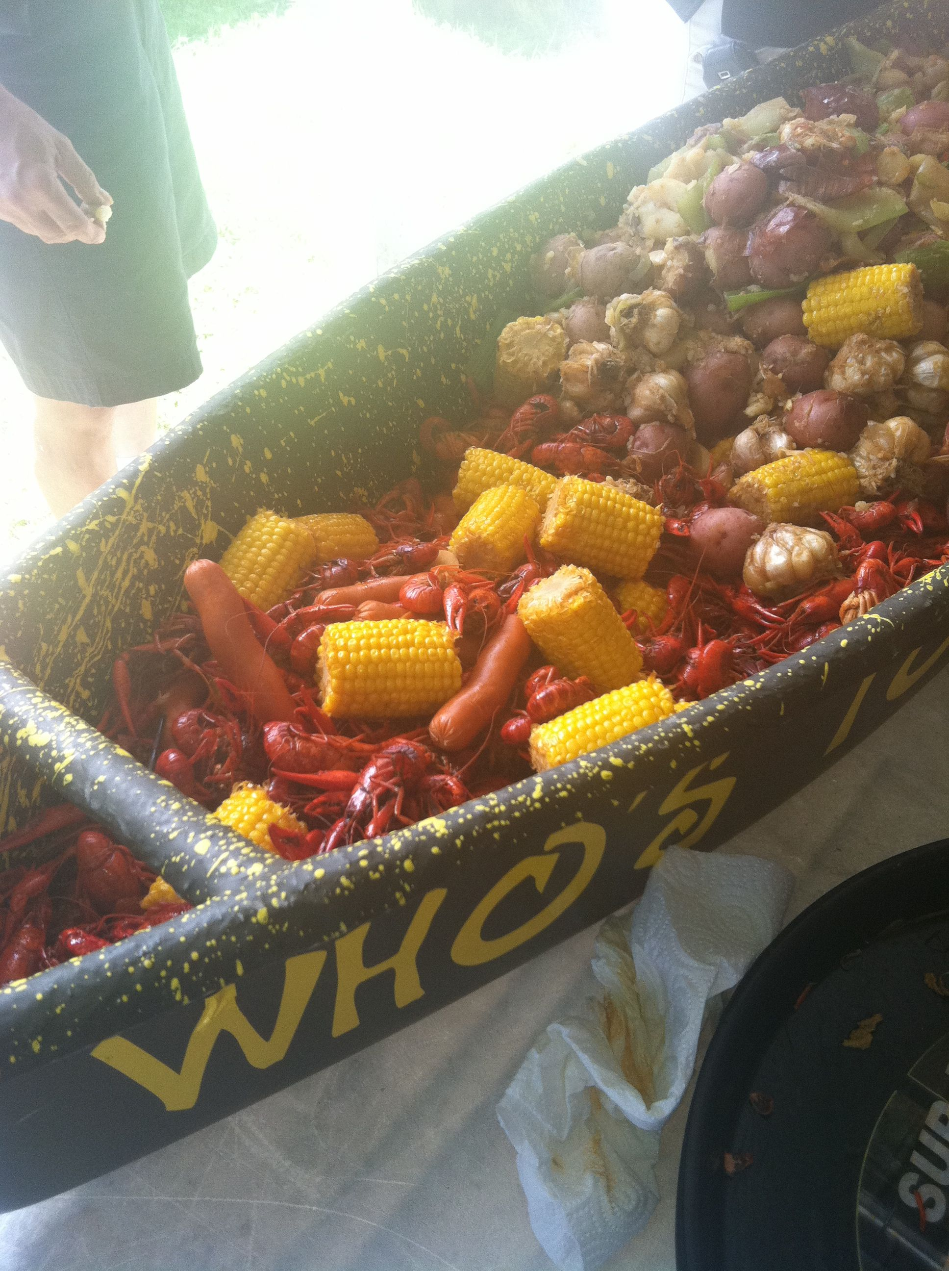Louisiana crawfish Shells harden with the summer heat. | Crawfish ...