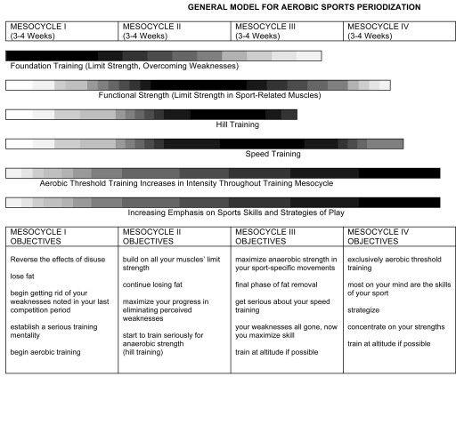 Periodization model 2
