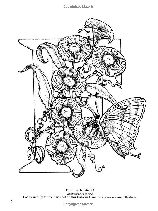 Dover Coloring Book Butterfly Alphabet Google Search Butterfly Coloring Page Pattern Coloring Pages Coloring Books