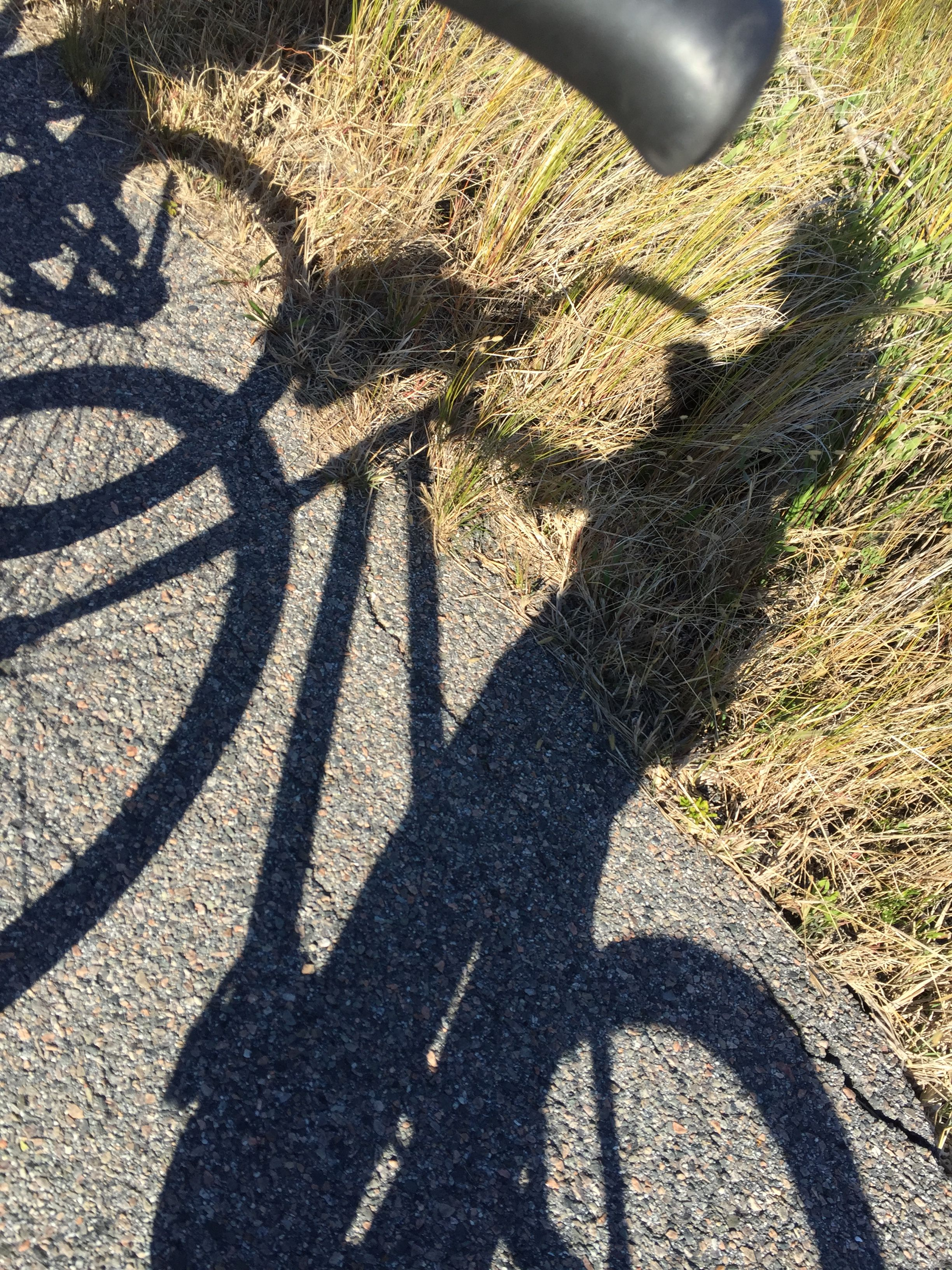 Caching on jekyll islands bike path bike path jekyll