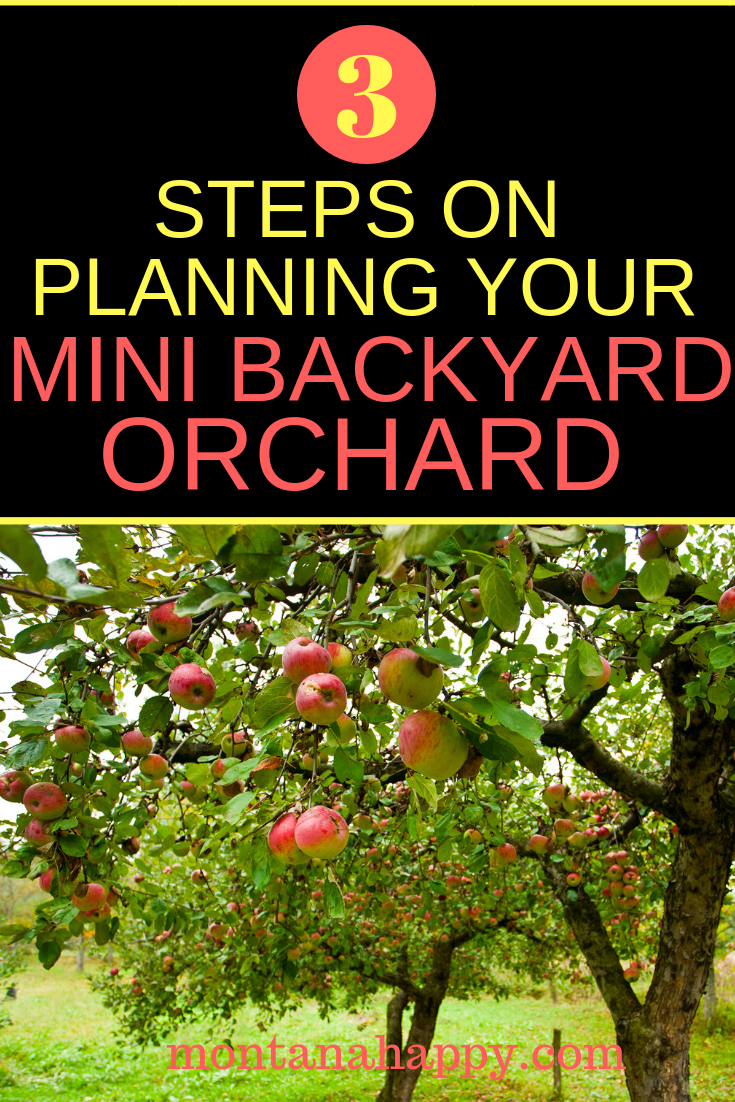 3 Steps on Planning Your Mini Backyard Orchard | rustic ...