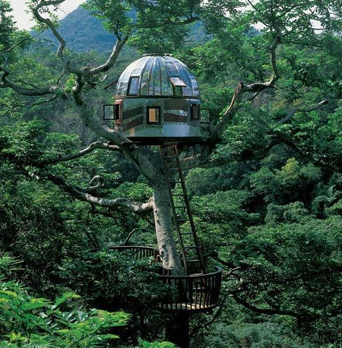 Futuristic Tree Houses