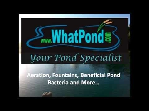 Pond Aeration 101 Formerly The Consumer Aeration Report In This Report You Ll Discover The Various Forms Of Aerating Farm Pond Pond Liner Floating Dock Plans