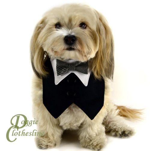 Black Ultrasuede Dog Tuxedo W Plaid Bow Tie For Wedding Doggie