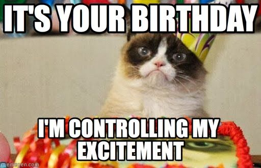 Image result for grumpy cat birthday