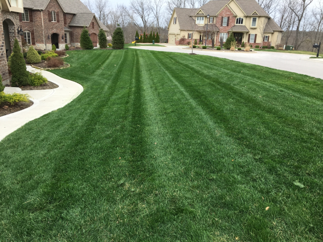 How To Have The Best Lawn In Chesterfield Mo Dowco Blog