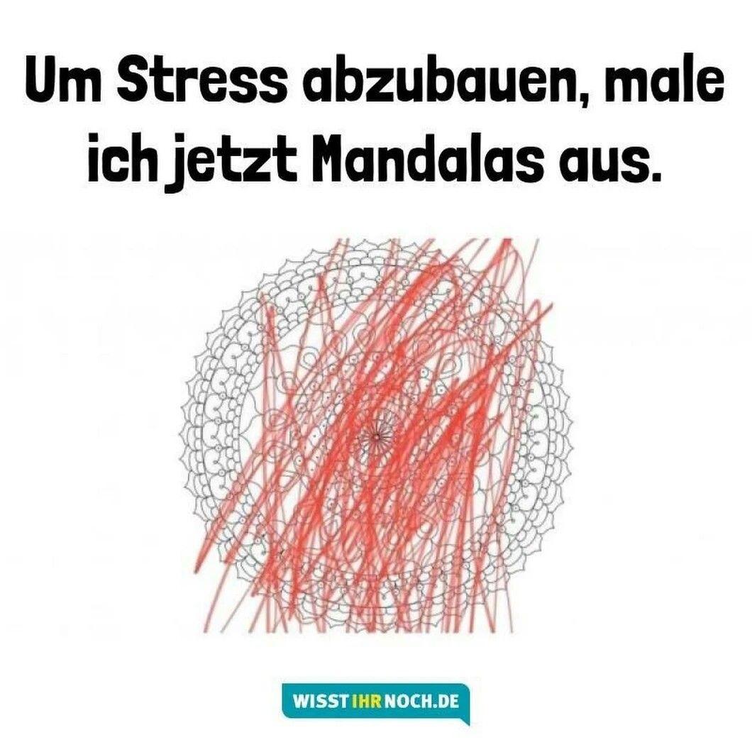 Pin Von Stephanie G Auf Humor Stress Lustig Witzige Spruche Lustige Bilder