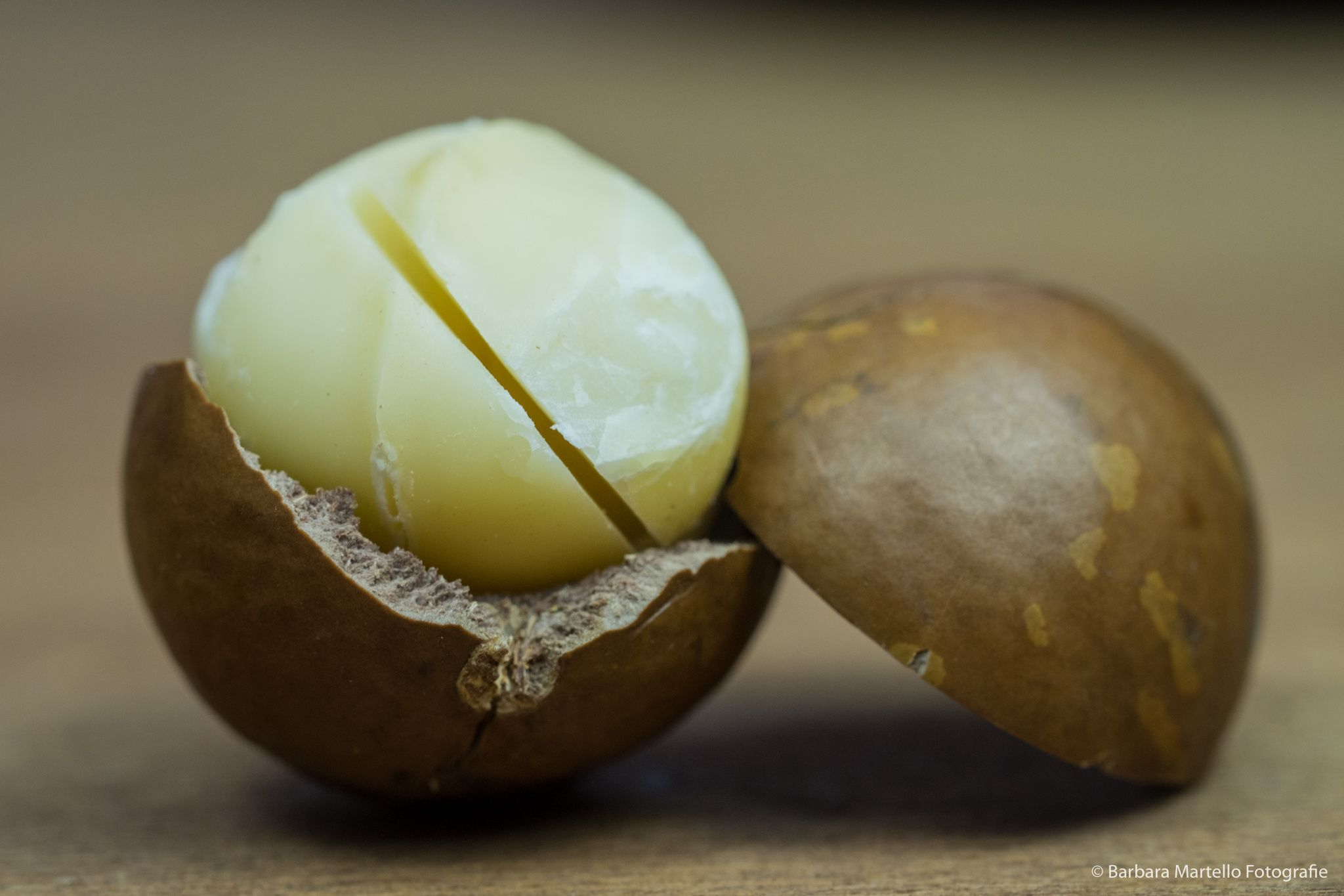 e0971034a16e96af7fbb022260ee6693 - How To Get Macadamia Nuts Out Of Their Shells