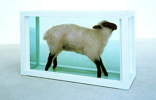 Damien Hirst - Away From the Flock | Damien hirst, Hirst, Learn art