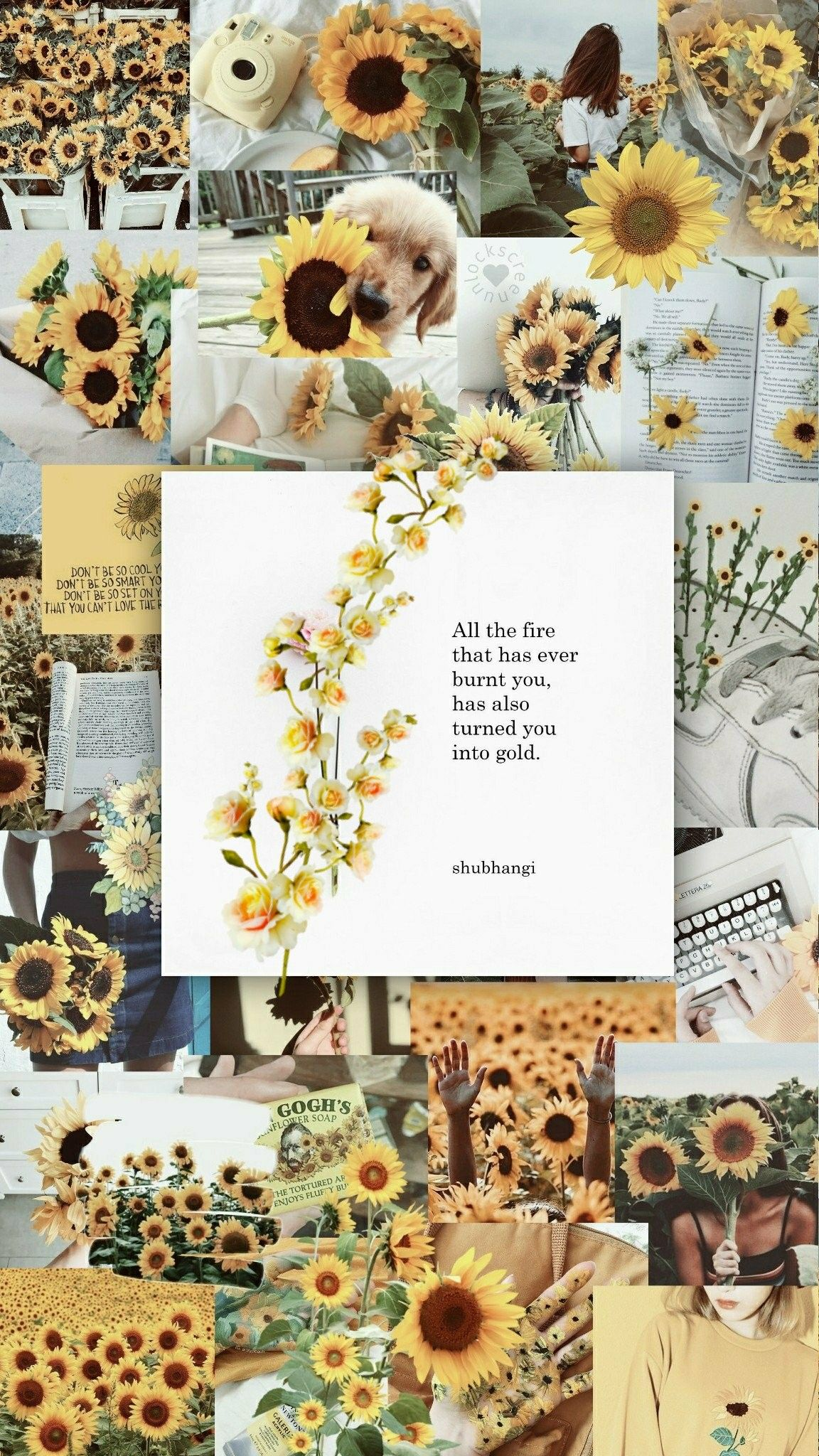 Ironic Quote In The Yellow Wallpaper Pin By Ashlee Sparks On Yellow Aesthetic Wallpaper