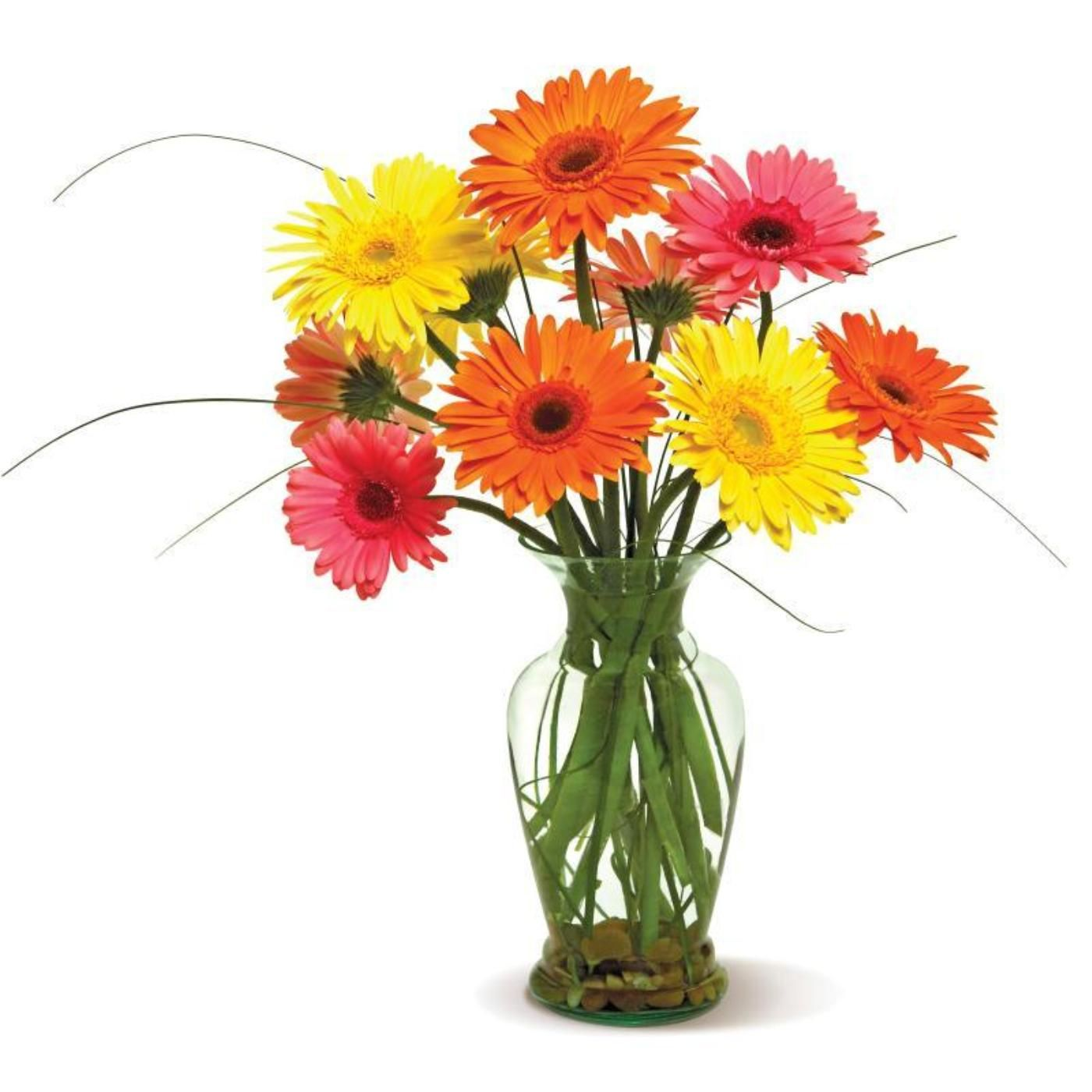 Send Flowers to USA Online flower delivery, Flower