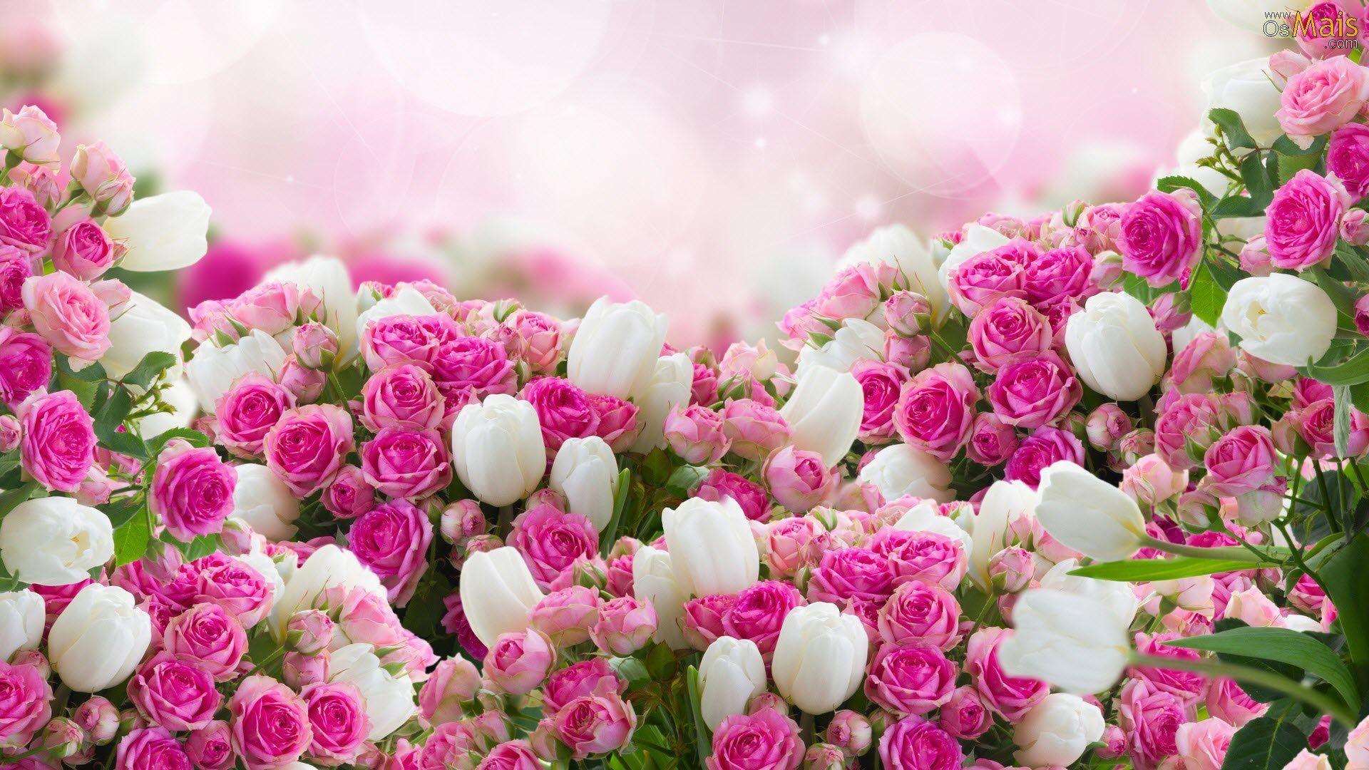 Papel De Parede Flores Lindas