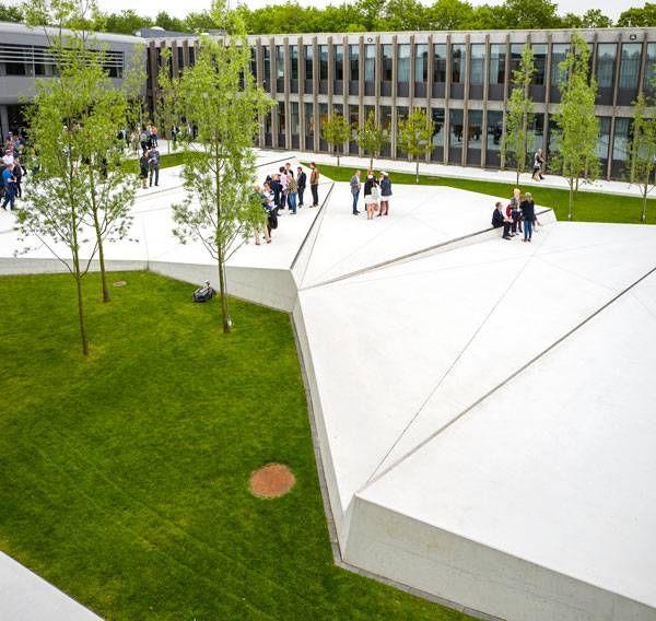 Why Every School Should Consider Having An Elegant Landscape