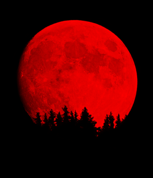 Pin By Danielle On Fly Me To The Moon Red Aesthetic Red Moon Red Moon Rising