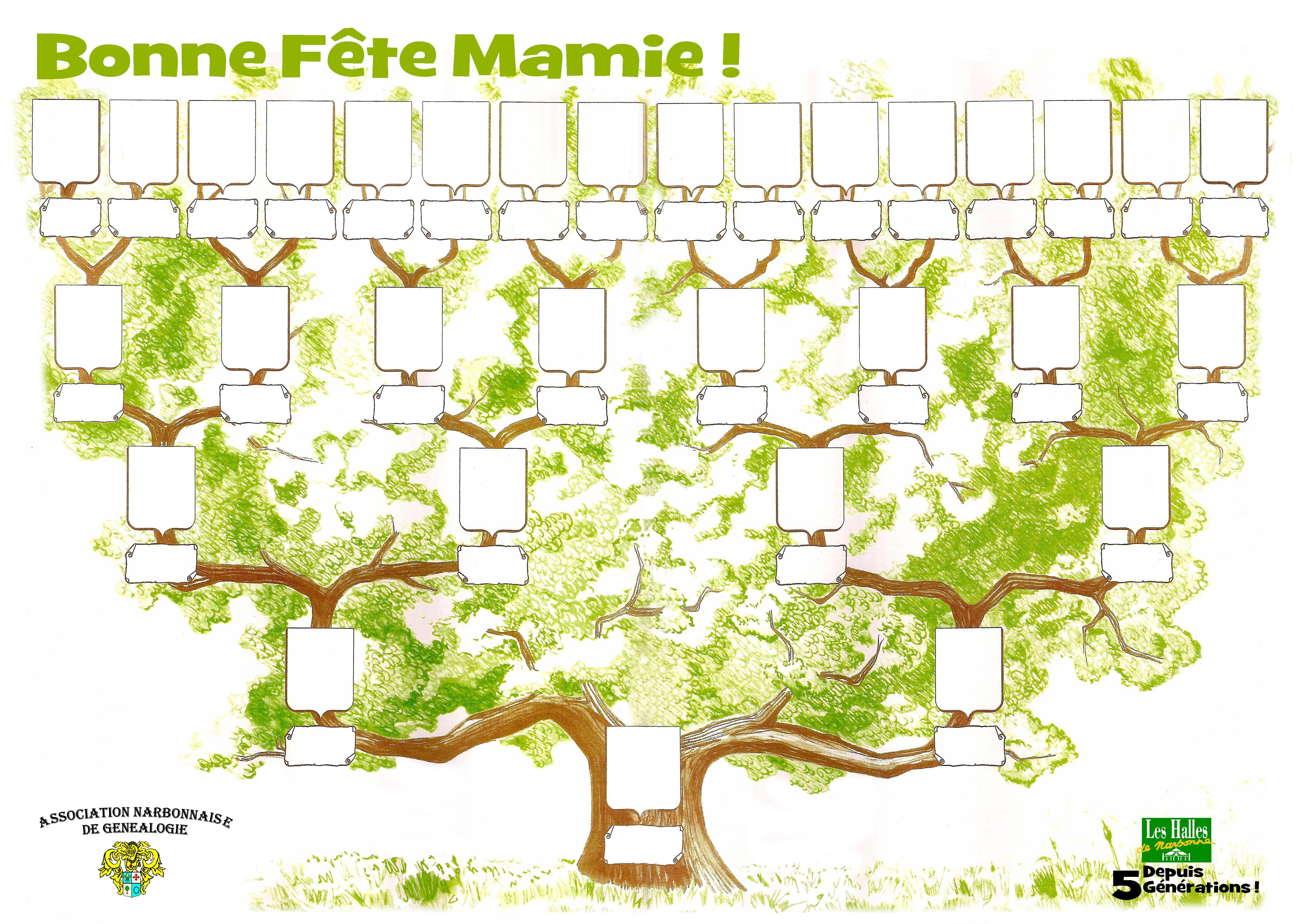 Arbre genealogique halles narbonne hd telechargement jpg - Arbre genealogique avec photo ...