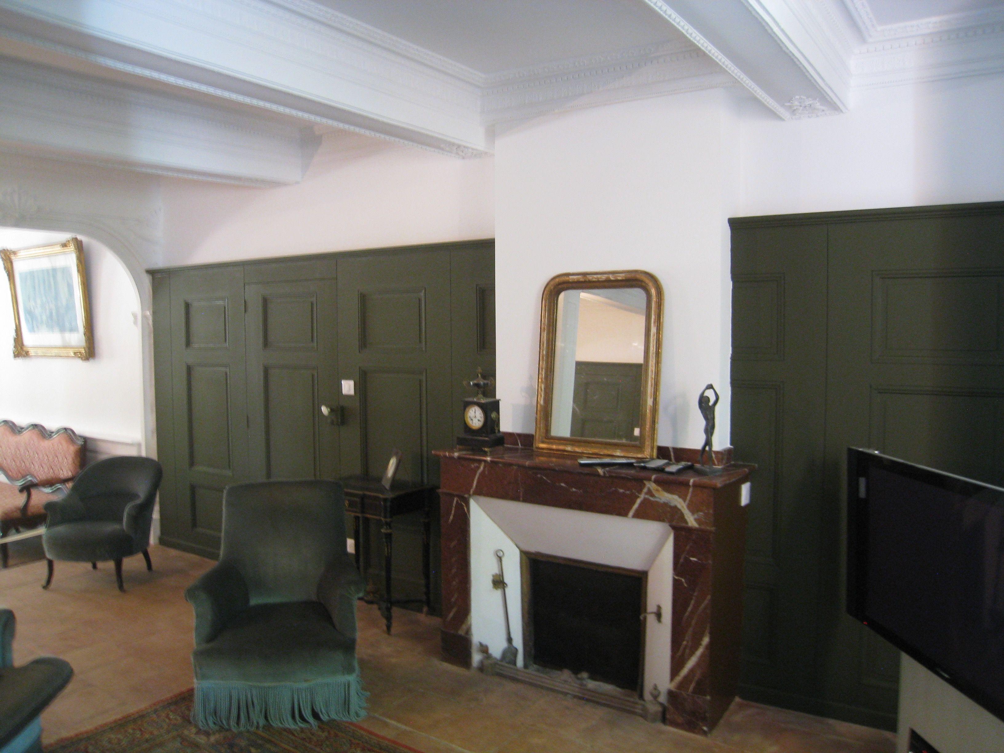 Incroyable Rénovation D Un Salon, Plafond Tendu 31 Extenzo, Peinture, Panneaux  Décoratifs Bois