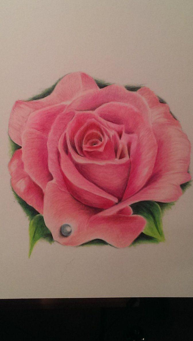 Tattoo meanings purple rose buscar con google tatoo i do want a realistic rose biocorpaavc Images