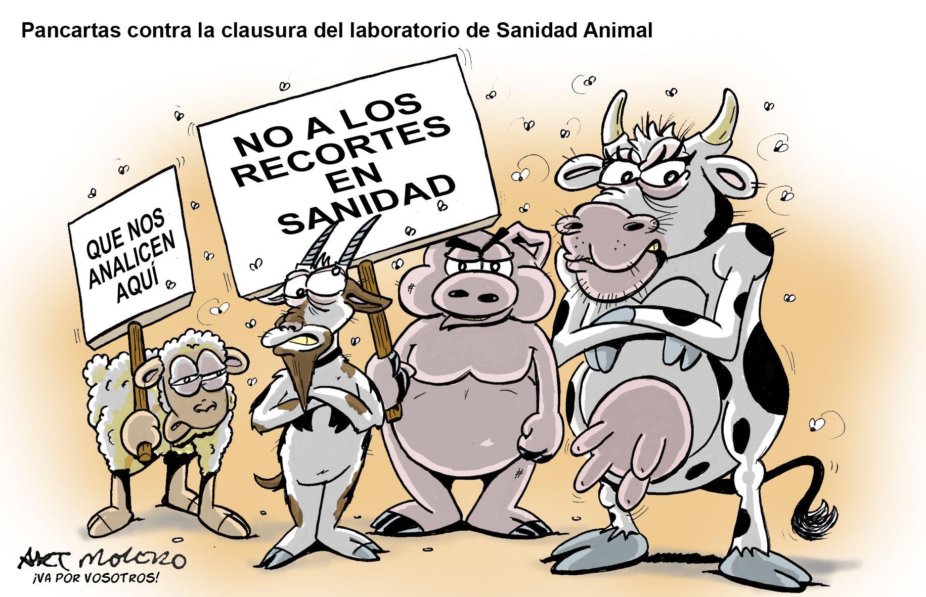 No Al Cierre Del Laboratorio De Sanidad Animal Sanidad Animal Sanidad Pancartas