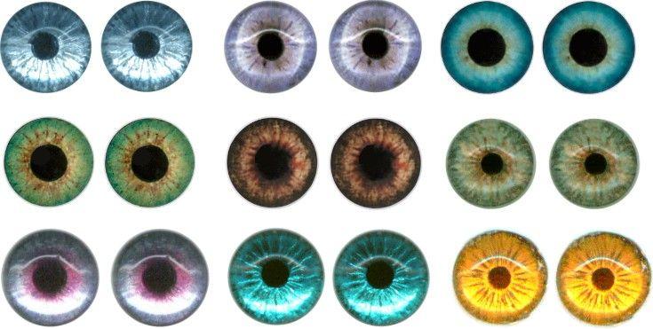 Ooakdollart Com View Topic Fake Flat Glass Eyes